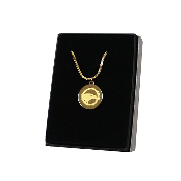 Image For CSI Pendant Necklace w/Academic Logo