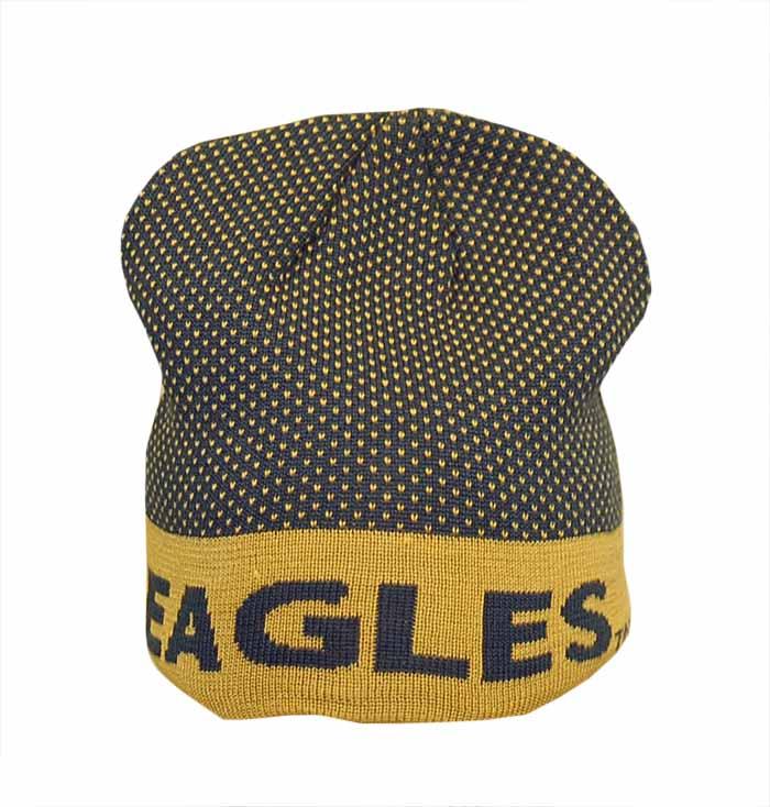 baabab500b8 The Game Navy Gold Beanie w Eagles