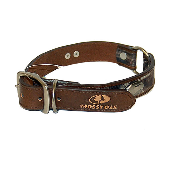 Image For Zep-Pro Mossy Oak Concho Dog Collar w/Academic Logo