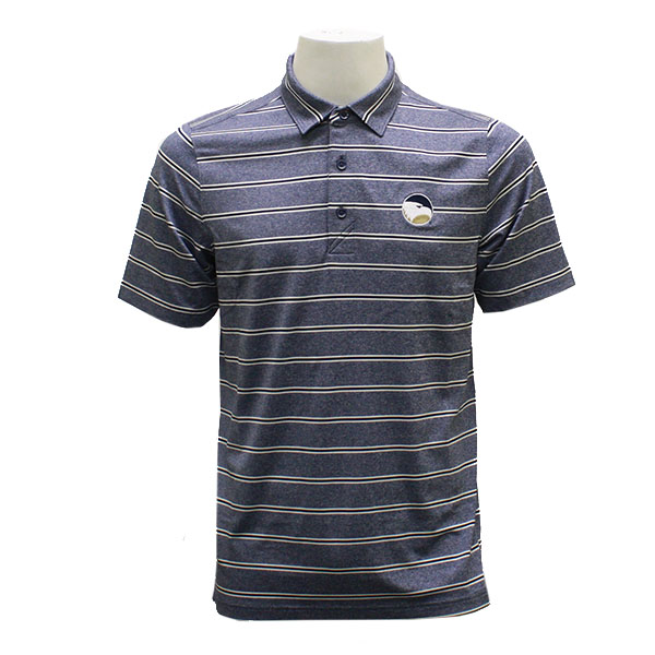 Image For CB DryTec Navy/White Stripe Polo w/Academic Logo