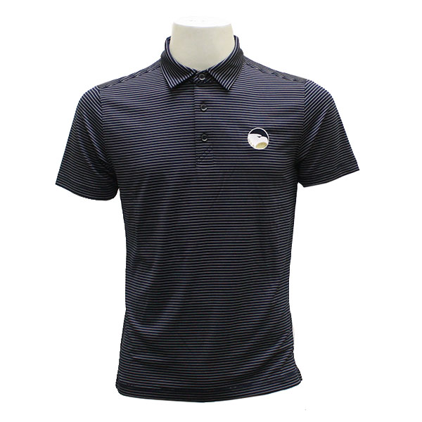 Image For CB Navy Stripe Polo w/ Academic Logo