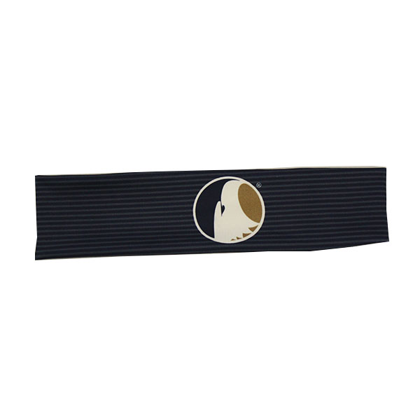 Image For League Navy Stripe Headband w/Academic Logo